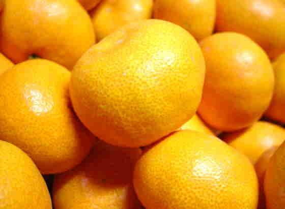 プチオレンジ(めっちゃ小さな有田みかん)